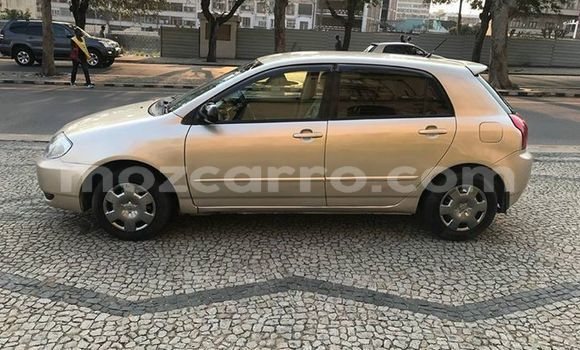 Buy Used Toyota Runx Beige Car in Maputo in Maputo