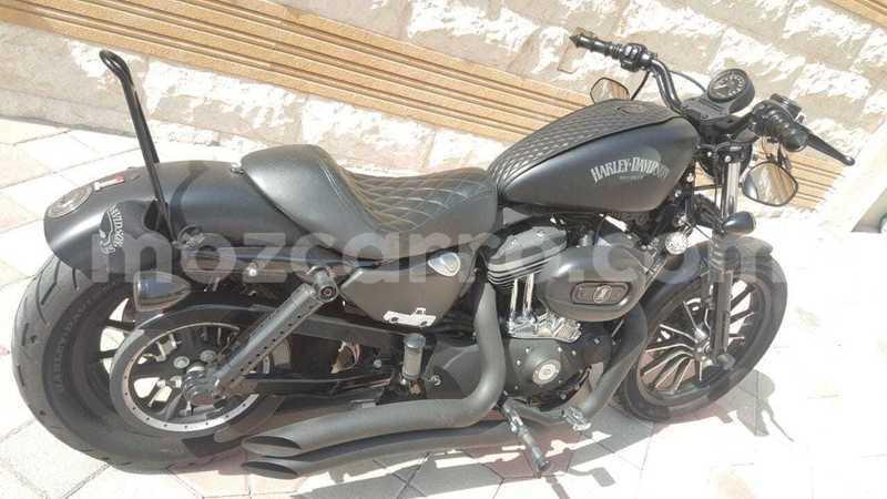 Big with watermark harley davidson iron maputo maputo 9979