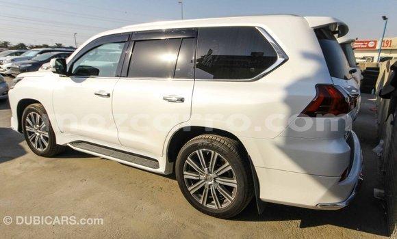 Comprar Importar Lexus LX Branco Carro em Import - Dubai em Cabo Delgado