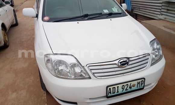 Comprar Usado Toyota Corolla Branco Carro em Maputo em Maputo