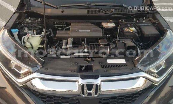 Comprar Importar Honda CR-V De outros Carro em Import - Dubai em Cabo Delgado
