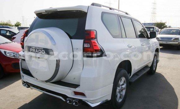 Comprar Importar Toyota Prado Branco Carro em Import - Dubai em Cabo Delgado