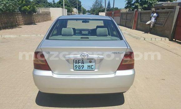 Buy Used Toyota Corolla Silver Car in Ancuabe in Cabo Delgado
