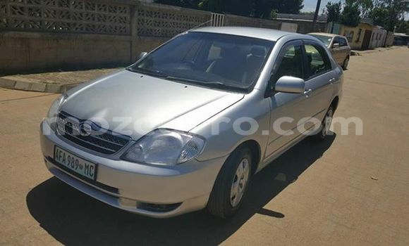Buy Used Toyota Corolla Silver Car in Ancuabe in Cabo Delgado