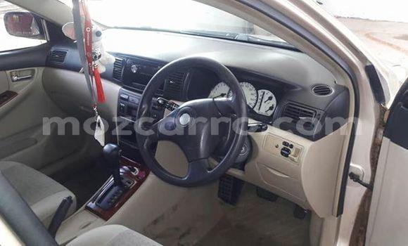 Comprar Usado Toyota Runx De outros Carro em Ancuabe em Cabo Delgado