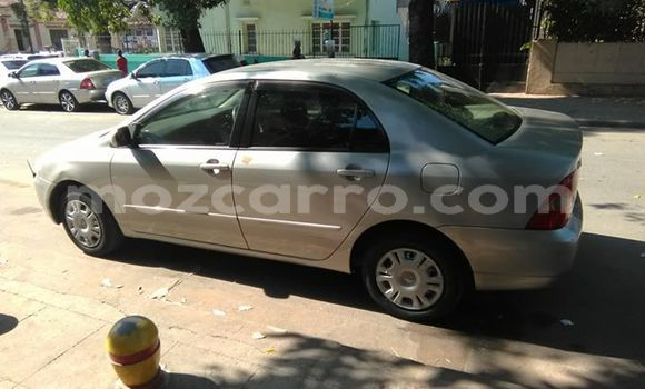 Buy Used Toyota Corolla Silver Car in Maputo in Maputo