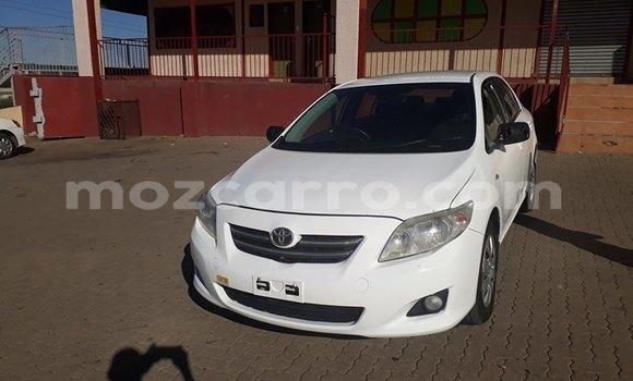 Buy Used Toyota Corolla White Car in Maputo in Maputo