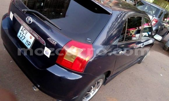 Buy Used Toyota Allex Black Car in Maputo in Maputo