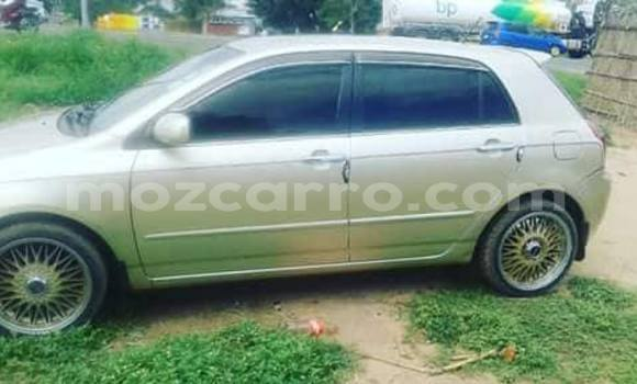 Buy Used Toyota Allex Other Car in Maputo in Maputo