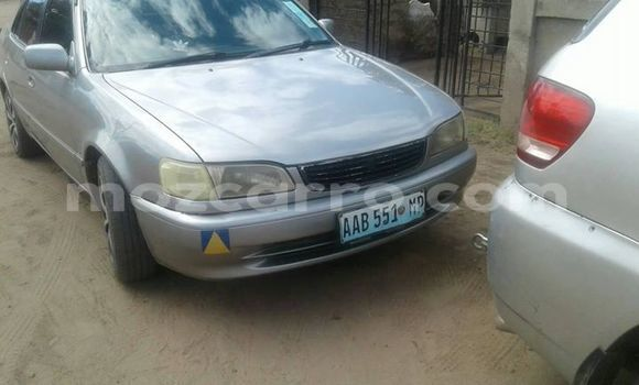 Buy Used Toyota Corolla Silver Car in Maputo in Maputo